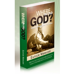 WHERE WAS GOD? book by Eunice Mawussi